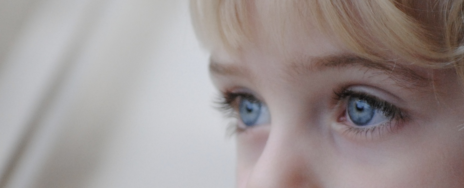 El nen perdut, de Thomas Wolfe